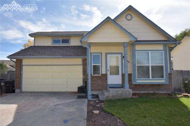 493 Pucket Circle, Colorado Springs, CO 80911 (#3307268) :: 8z Real Estate