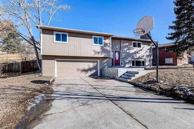 4075 Iron Horse Trail, Colorado Springs, CO 80917 (#3313133) :: Fisk Team, RE/MAX Properties, Inc.