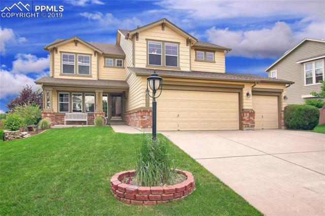 3106 Blackwood Place, Colorado Springs, CO 80920 (#3315339) :: Tommy Daly Home Team