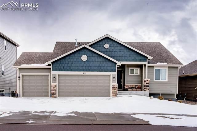 855 Pistol River Way, Colorado Springs, CO 80921 (#3315890) :: 8z Real Estate