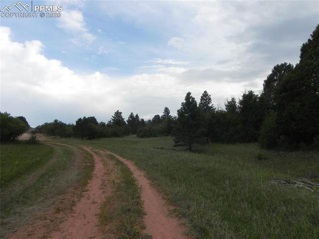 6129 St Andrews Court, Larkspur, CO 80118 (#3317279) :: Finch & Gable Real Estate Co.
