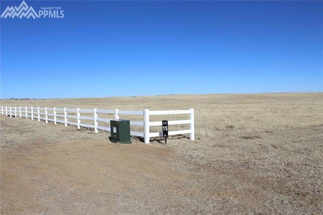 18386 Prairie Coach View, Calhan, CO 80808 (#3324116) :: Action Team Realty