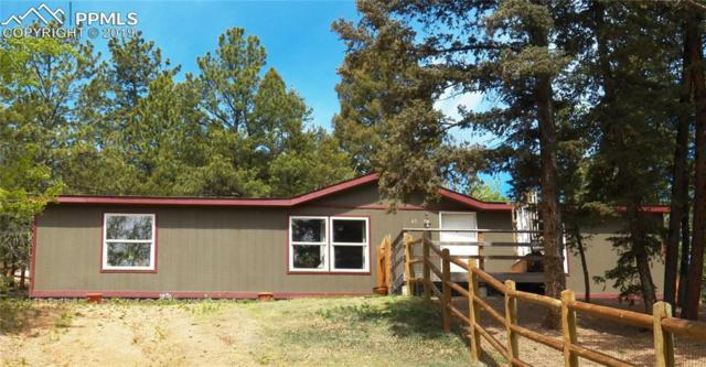 49 Anderson Road, Florissant, CO 80816 (#3327249) :: Tommy Daly Home Team
