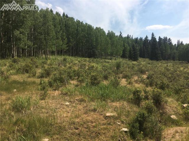 1516 Anges Drive, Cripple Creek, CO 80813 (#3327749) :: The Peak Properties Group