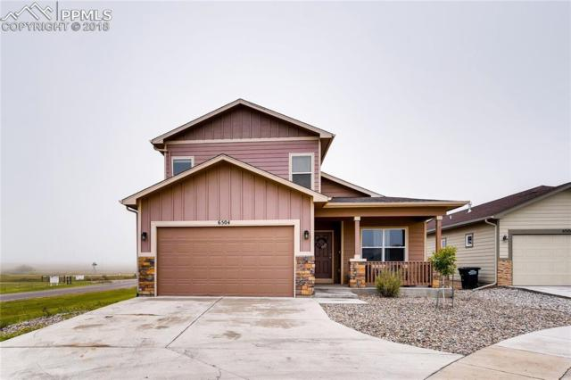 6504 Watusi Road, Colorado Springs, CO 80831 (#3328131) :: 8z Real Estate