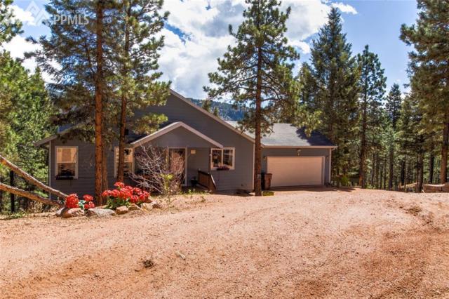 197 Summer Haven Drive, Woodland Park, CO 80863 (#3328203) :: 8z Real Estate