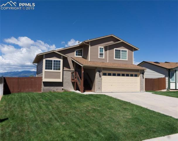7382 Sue Lane, Colorado Springs, CO 80925 (#3341224) :: Fisk Team, RE/MAX Properties, Inc.