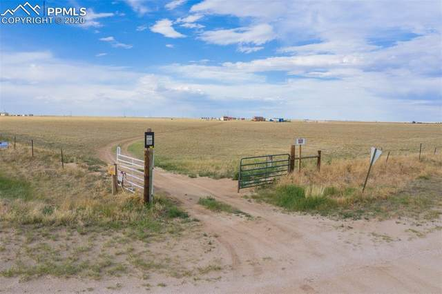 2005 County Road X, Rush, CO 80833 (#3341522) :: Tommy Daly Home Team