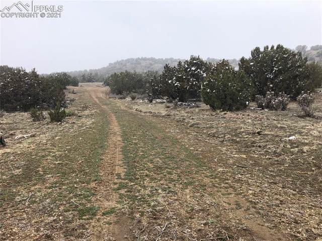 7667 Soda Creek Road, Pueblo, CO 81005 (#3344773) :: The Cutting Edge, Realtors