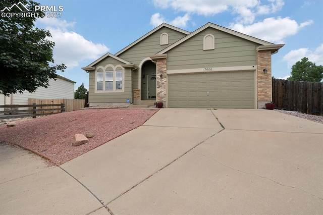 7606 Cholla Court, Colorado Springs, CO 80922 (#3345355) :: Finch & Gable Real Estate Co.