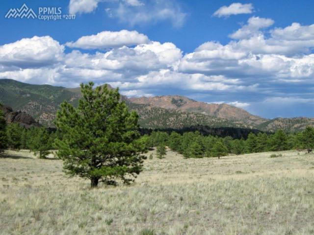 1668 Forest Service 216 Road, Lake George, CO 80827 (#3346257) :: 8z Real Estate