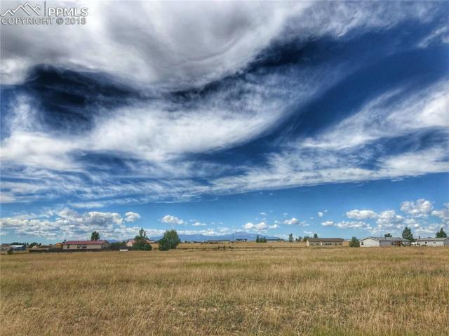 1169 Spotted Owl Way, Calhan, CO 80808 (#3346349) :: Fisk Team, RE/MAX Properties, Inc.