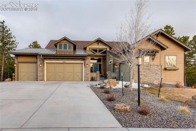 1462 Summerglow Lane, Monument, CO 80132 (#3348550) :: Tommy Daly Home Team
