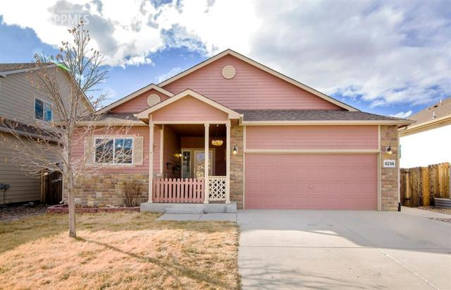 6246 Hungry Horse Lane, Colorado Springs, CO 80925 (#3349246) :: 8z Real Estate