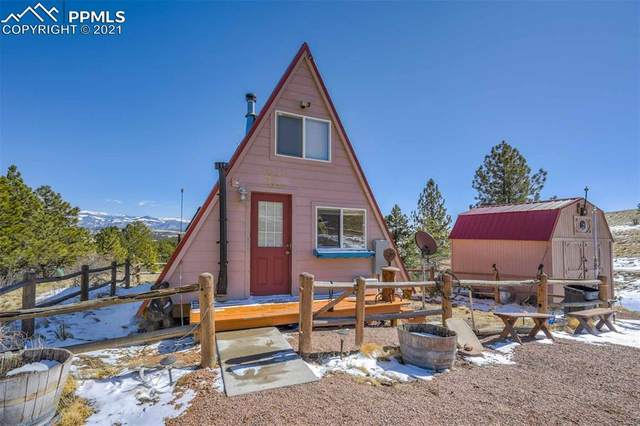 354 Witcher Mountain Trail, Guffey, CO 80820 (#3349627) :: Finch & Gable Real Estate Co.