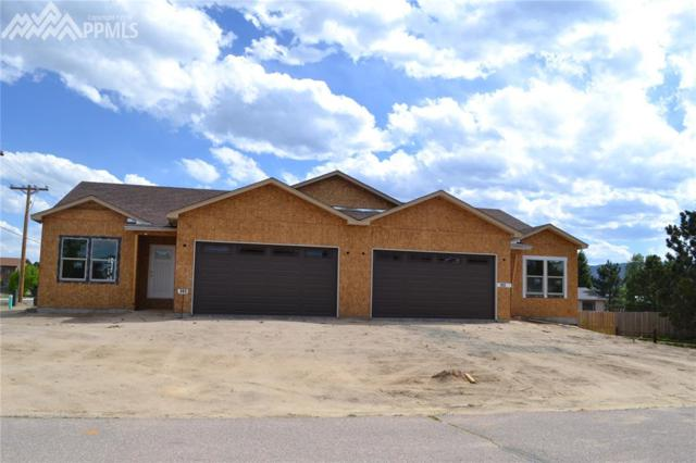352 Buttonwood Court, Monument, CO 80132 (#3349705) :: The Treasure Davis Team