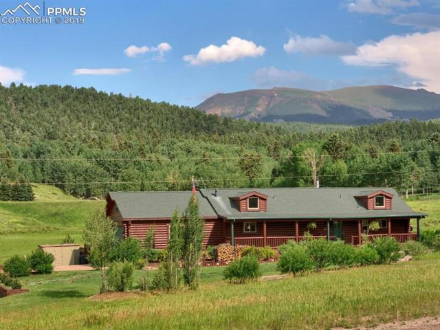 826 Cantiberry Road, Divide, CO 80814 (#3353949) :: Action Team Realty