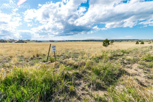 11950 Silver Concho Trail, Elbert, CO 80106 (#3362195) :: Action Team Realty