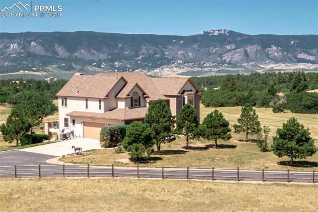1680 Elk View Road, Larkspur, CO 80118 (#3363274) :: 8z Real Estate