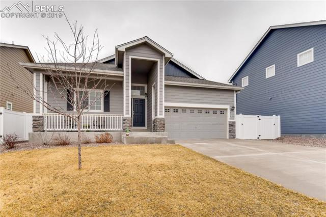 9713 Terrain Road, Fountain, CO 80817 (#3366780) :: Fisk Team, RE/MAX Properties, Inc.