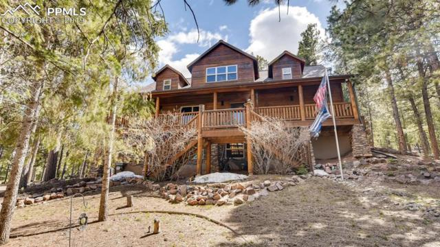 1143 Windflower Lane, Woodland Park, CO 80863 (#3367986) :: CENTURY 21 Curbow Realty