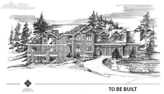 961 Spacious Skies Drive, Woodland Park, CO 80863 (#3368084) :: 8z Real Estate