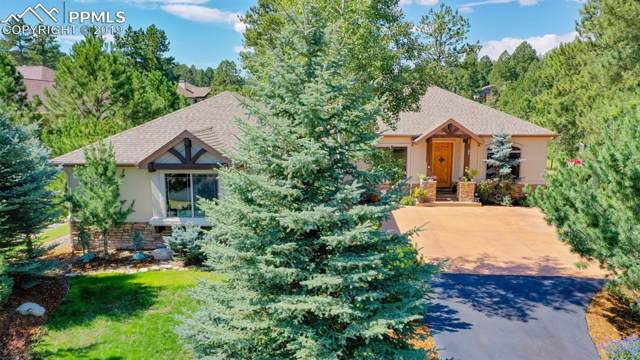 684 Independence Drive, Larkspur, CO 80118 (#3373855) :: 8z Real Estate