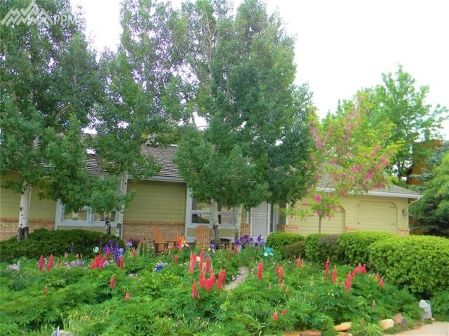 4 Kreg Lane, Manitou Springs, CO 80829 (#3375278) :: CENTURY 21 Curbow Realty