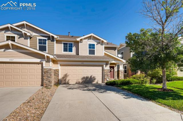 6181 Turnstone Place, Castle Rock, CO 80104 (#3376116) :: Jason Daniels & Associates at RE/MAX Millennium