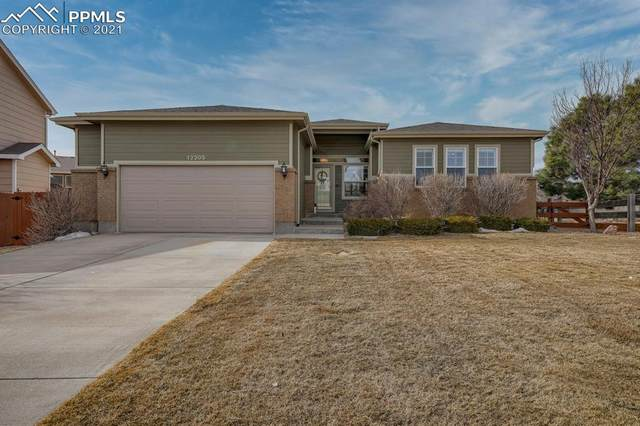 12205 Angelina Drive, Peyton, CO 80831 (#3376992) :: Tommy Daly Home Team