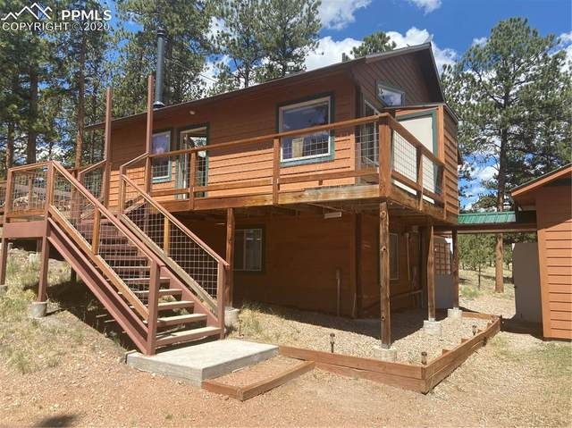 225 3rd Street, Guffey, CO 80820 (#3378230) :: Finch & Gable Real Estate Co.