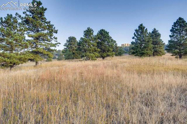 615 Pioneer Camp View, Palmer Lake, CO 80133 (#3378735) :: Tommy Daly Home Team