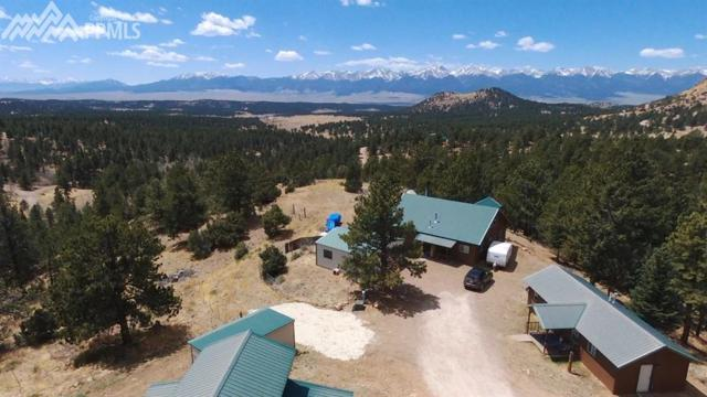 209 Paintbrush Point, Westcliffe, CO 81252 (#3393414) :: CENTURY 21 Curbow Realty