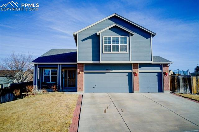 7334 Campstool Drive, Colorado Springs, CO 80922 (#3393540) :: Action Team Realty