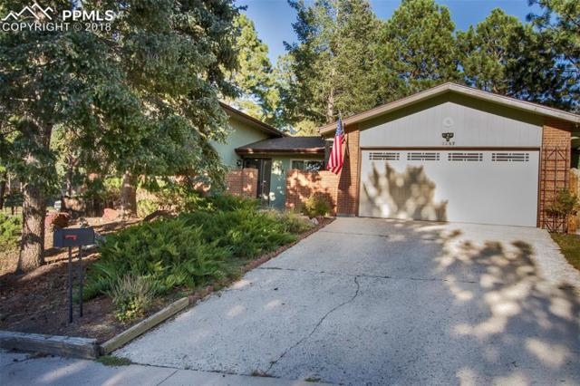 3287 Squaw Valley Drive, Colorado Springs, CO 80918 (#3394729) :: Jason Daniels & Associates at RE/MAX Millennium