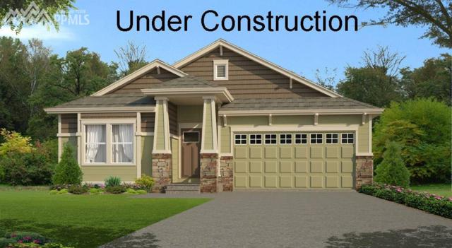 6235 Daylesford Street, Colorado Springs, CO 80923 (#3395179) :: RE/MAX Advantage