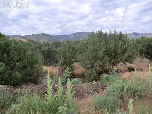 140 N Osprey Court, Canon City, CO 81212 (#3399463) :: Colorado Home Finder Realty