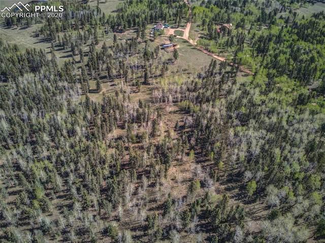 TBD County Road 51 Road, Divide, CO 80814 (#3402669) :: 8z Real Estate