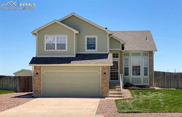 7223 Allens Park Drive, Colorado Springs, CO 80922 (#3402834) :: Fisk Team, RE/MAX Properties, Inc.