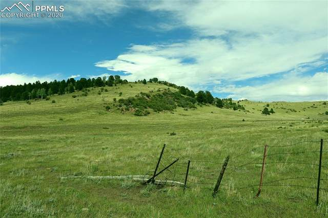 Being Verified, Cripple Creek, CO 80813 (#3404079) :: 8z Real Estate