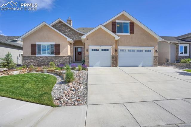 191 Coyote Willow Drive, Colorado Springs, CO 80921 (#3404131) :: The Peak Properties Group