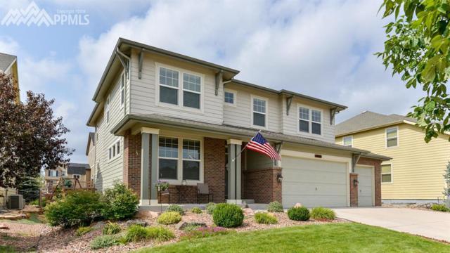 5816 Revelstoke Drive, Colorado Springs, CO 80924 (#3405823) :: Colorado Home Finder Realty