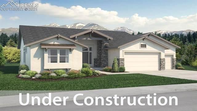 11807 Koenig Drive, Colorado Springs, CO 80921 (#3406903) :: Tommy Daly Home Team