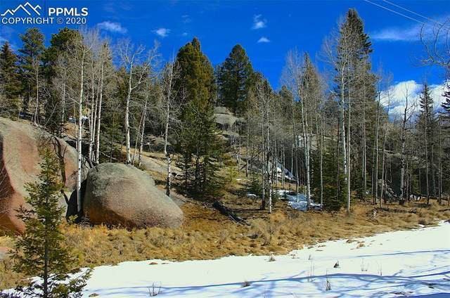 329 and 30 Spring Valley Lane, Florissant, CO 80816 (#3409330) :: Finch & Gable Real Estate Co.