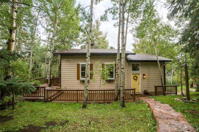 9720 Mountain Road, Cascade, CO 80809 (#3409483) :: The Treasure Davis Team