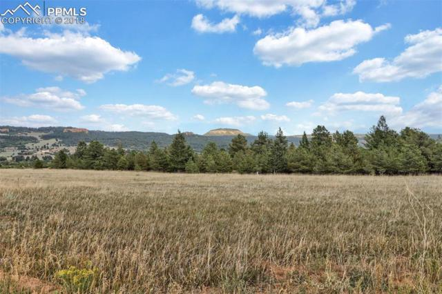 Lot 9 Stone View Road, Monument, CO 80132 (#3410375) :: 8z Real Estate