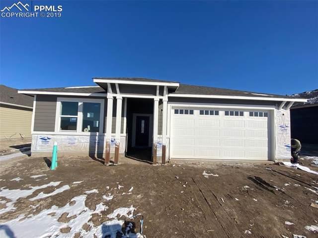 6550 Mancala Way, Colorado Springs, CO 80924 (#3418818) :: Jason Daniels & Associates at RE/MAX Millennium
