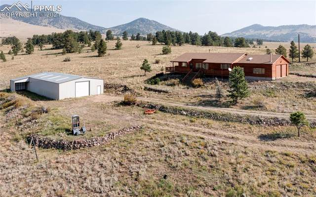 481 Old Kathleen Trail, Guffey, CO 80820 (#3419490) :: Tommy Daly Home Team