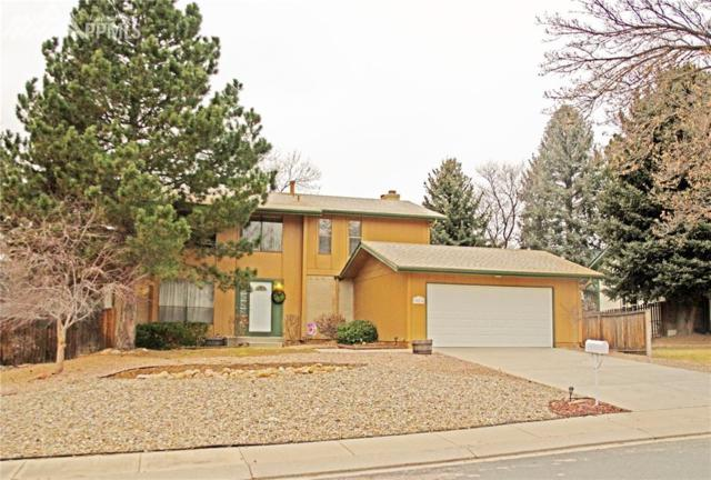 3076 Meander Circle, Colorado Springs, CO 80917 (#3423993) :: The Cutting Edge, Realtors