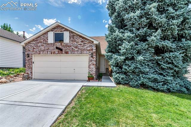 4807 N Bearlily Way, Castle Rock, CO 80109 (#3428309) :: Tommy Daly Home Team